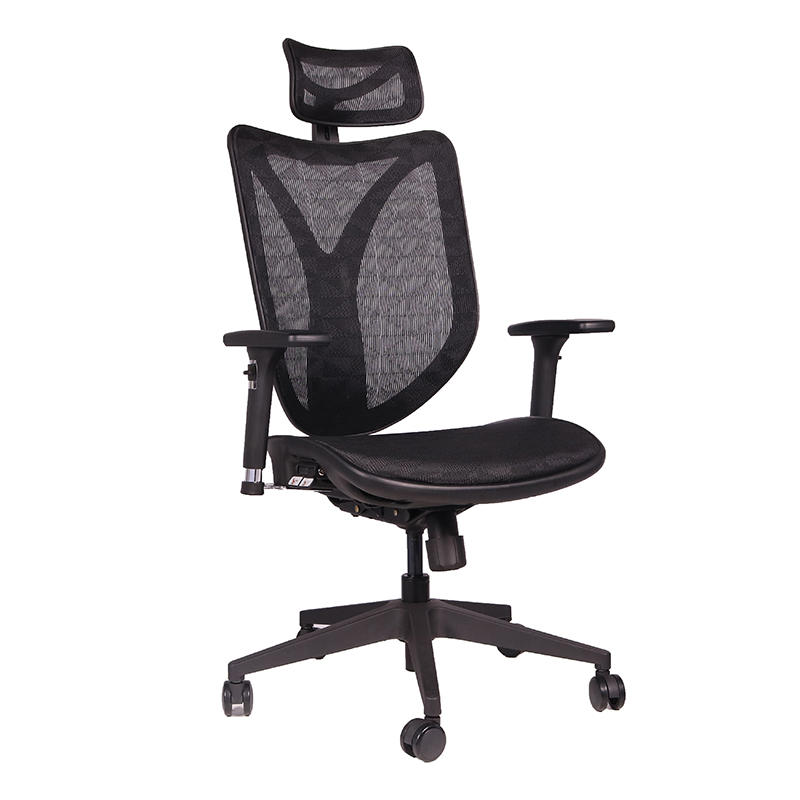 Frank Tech executive ergonomic chairs with sophisticated look for bank-2
