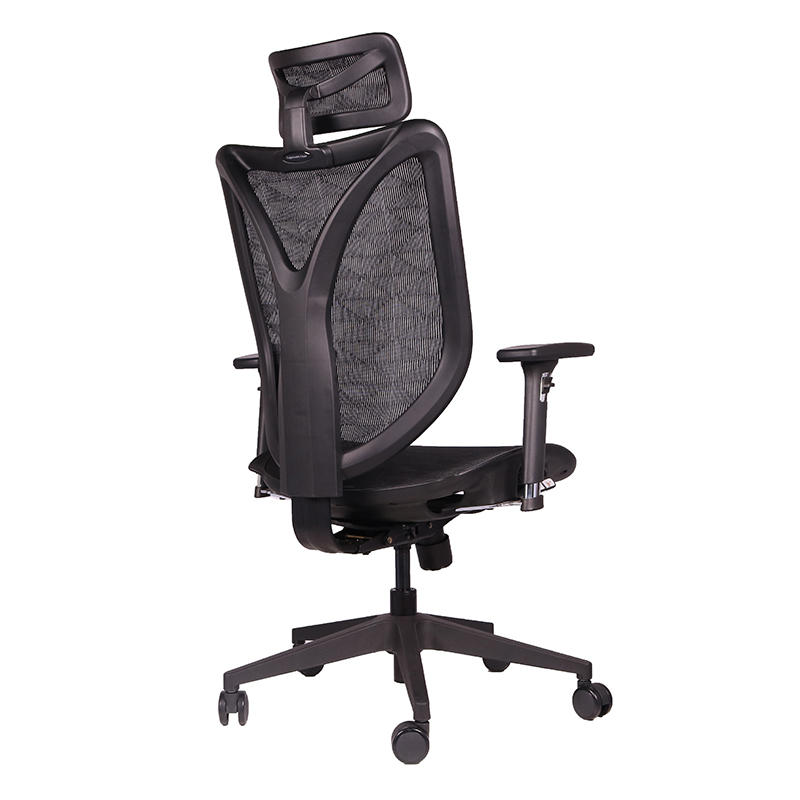 Frank Tech executive ergonomic chairs with sophisticated look for bank-3